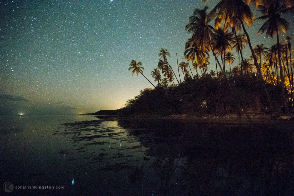 Stars over the Palm Grove, Molokai